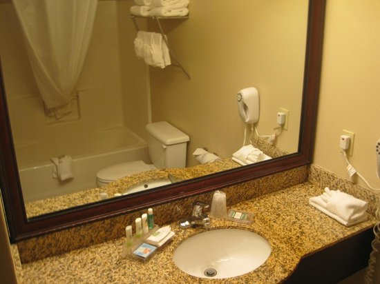 Country Inn & Suites By Carlson, Fort Dodge: Bathroom
