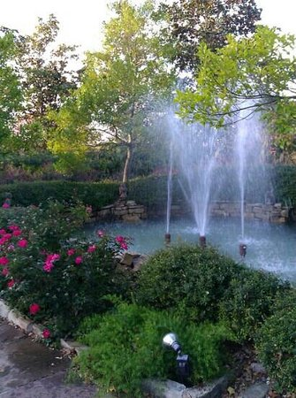 Fall In Chandor Gardens Picture Of Chandor Gardens Weatherford Tripadvisor