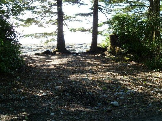 Mussel Beach Campground: private waterfronts sites