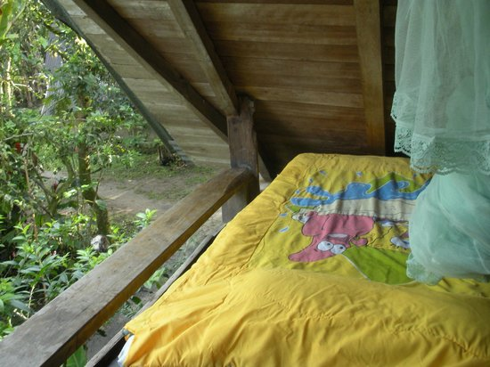 La Casa de Cecilia: My tiny and perfect open air room, complete with Spongebob bedcover!