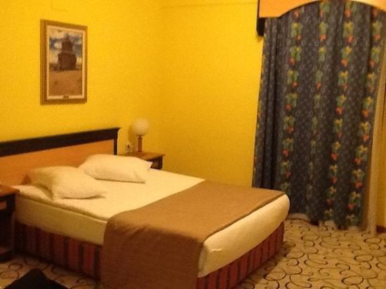 Tas Saray Hotel: Single room