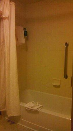 Homewood Suites by Hilton Austin / Round Rock: homewood suites bathroom
