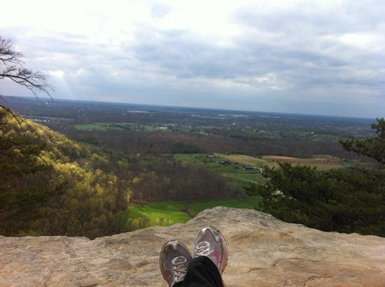 Berea Pinnacles: My view from Indian Fort Mountain in early Spring