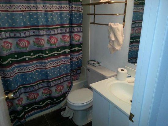 Oak Square at Gatlinburg: Bathroom