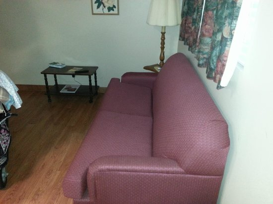 "Oak Square at Gatlinburg: The couch bed (it was uncomfortable but the kids loved it ""their B'couch)"