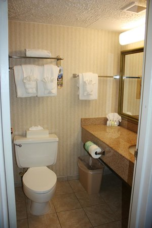 BEST WESTERN Plus Rockville Hotel & Suites: Bathroom.