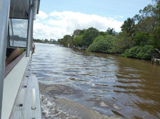 Noosa Cruising Restaurant: Upper reaches of River near Tewantin