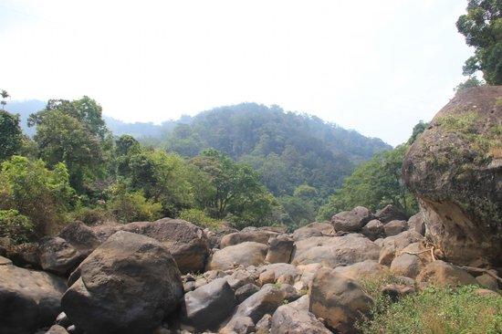 Kaivalyam Retreat: nearby waterfalls
