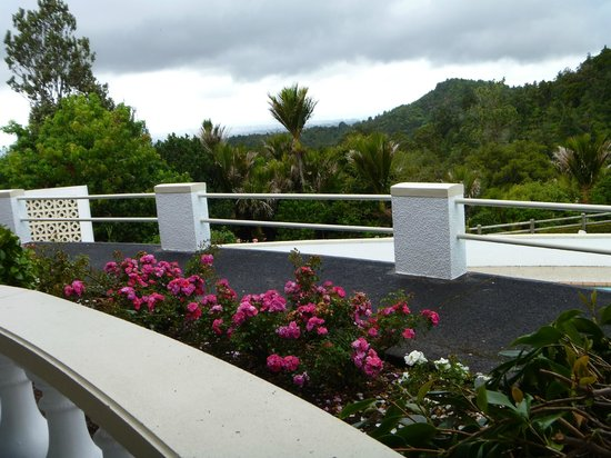 Heritage Collection Waitakere Estate: View from room