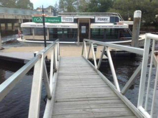 Noosa River Retreat: Noosa Ferry