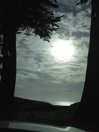 Tomales Bay State Park: Pacific Ocean peeking through the trees at sunset