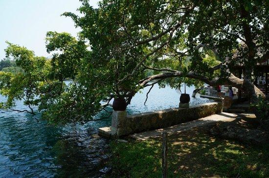 Restaurante Cenote Azul: 05 Vista entre el Restaurante y Palapas para pic-nic