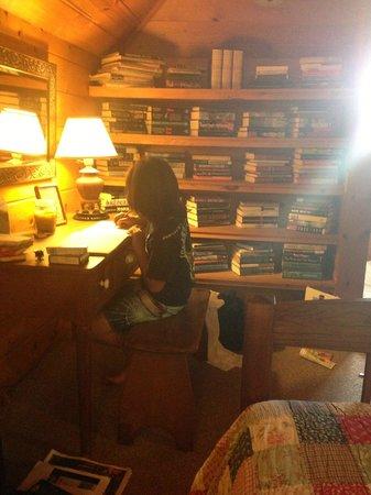 Waipio Wayside B&B: Library room