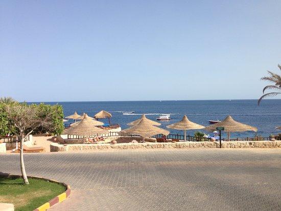 Hilton Sharks Bay Resort: ريحة السولار على الشاطئ