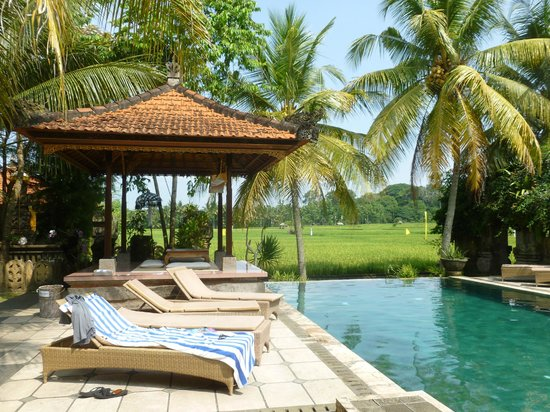 Green Field Hotel and Bungalows: Pool area--salt water pool and rice fields view