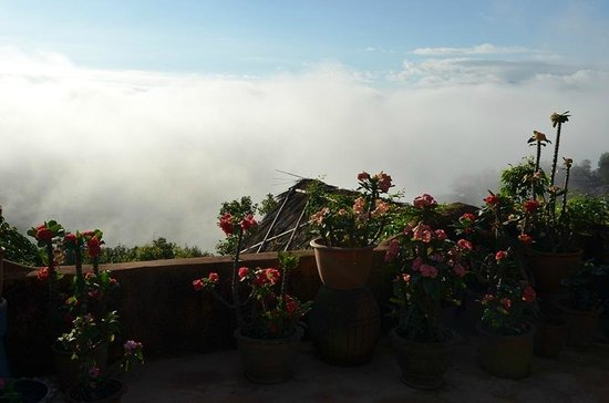 Phu Chaisai Mountain Resort: Morning view from a rooftop location