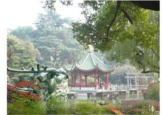 Shanghai Lilac Garden Photo