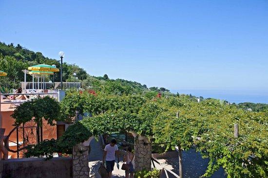 Hotel Il Girasole: Giardino