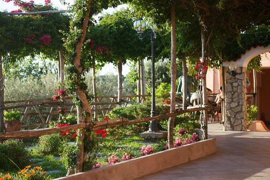 Hotel Il Girasole: Giardino/Terrazza