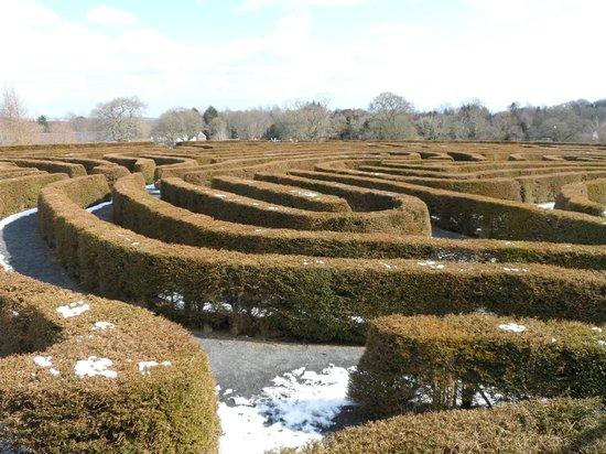 Castlewellan Forest Park : The Peace Maze