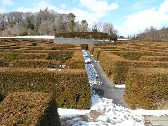 Castlewellan Forest Park : The PeaceMaze