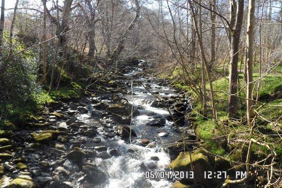 Moness Resort: woodland walk