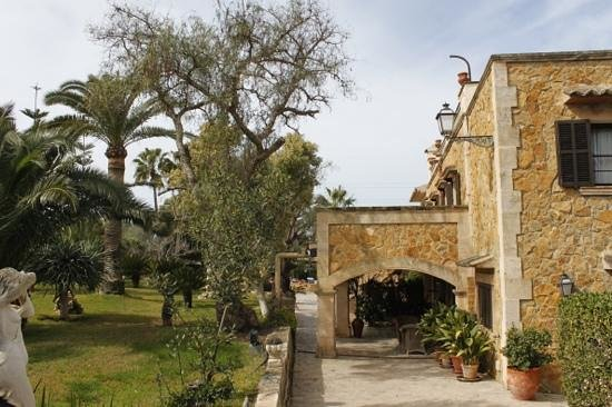 Posada d'es Moli: Blick auf den Garten