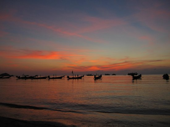 Asia Divers Resort: Saree beach sunset