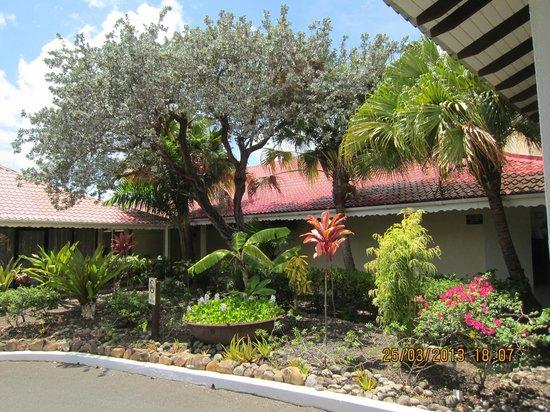 Radisson Grenada Beach Resort: Have