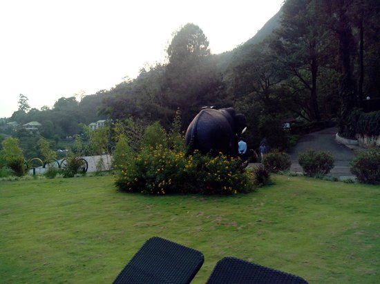 Munnar - Terrace Greens, A Sterling Holidays Resort: Lawn