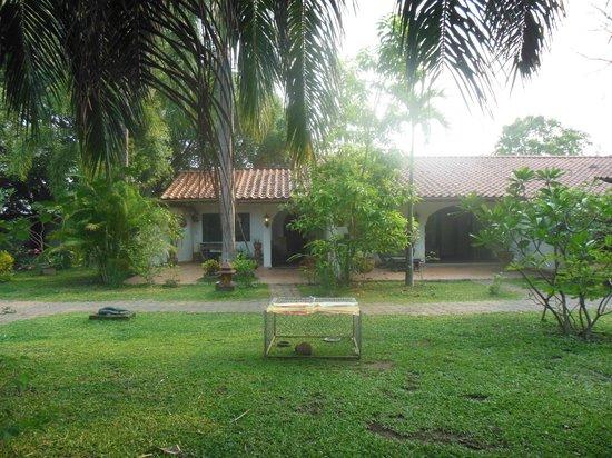 Secret Garden Chiang Mai: 私が泊まったレモンツリーのバンガロー