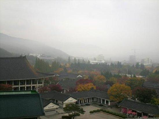 Commodore Hotel Gyeongju : ホテルからの幻想的な眺望