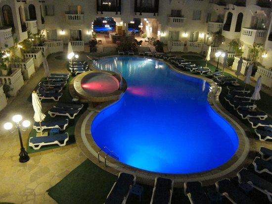 Oriental Rivoli Hotel: piscina