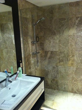Hotel Mousson : Shower