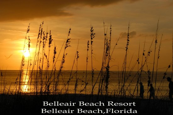 Belleair Beach Resort : View from room