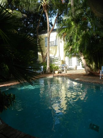 Angelina Guest House: bordo piscina