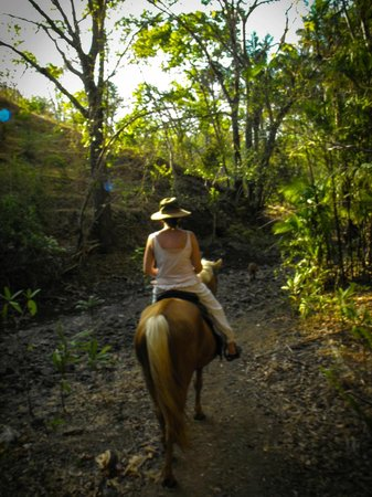 Eco Venao: Horse Back riding