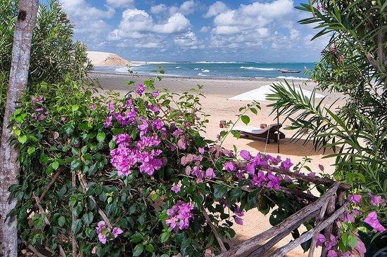 Casa de Areia: 12 Vista