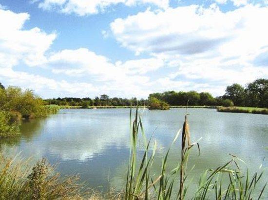 The Grange: Trout lake on farm
