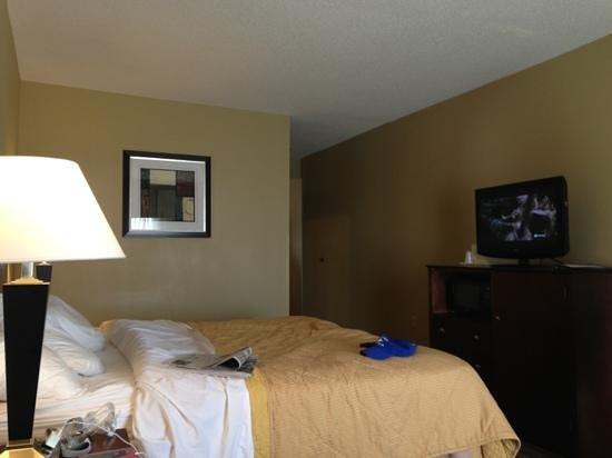 Comfort Inn : king bed - plenty of room