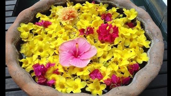 Casuarina Resort & Spa: i fiori dell'isola
