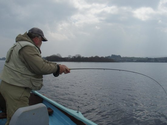 Grasshopper Cottage: Lough Corrib - into a fish!