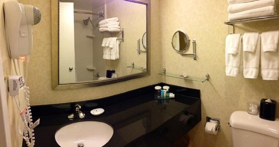"Crowne Plaza Washington National Airport: Twelfth ""executive"" floor bathroom"