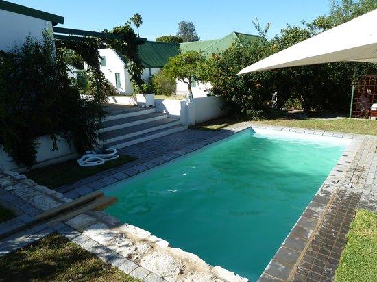 De Doornkraal Historic Country House Boutique Hotel: The pool