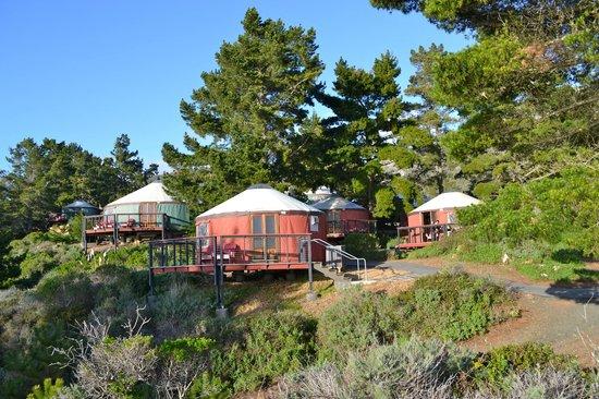 Treebones Resort : Yurt Village