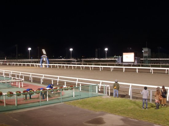 Monbetsu Horse Tracks
