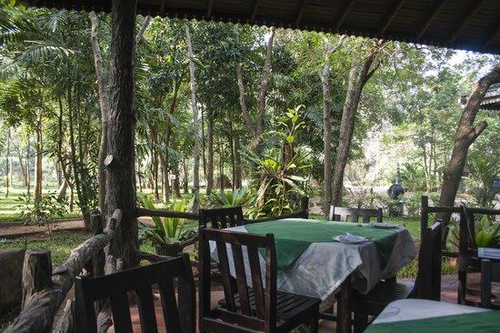 Eden Garden Hotel : View from restaurant