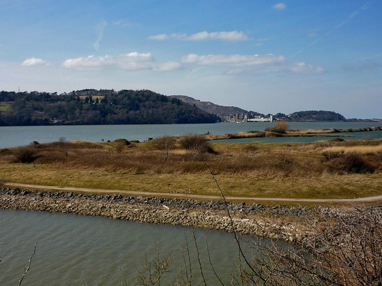 RSPB Conwy Nature Reserve : View of RSPB Nature Reserve looking towards Conwy Castle in the distance