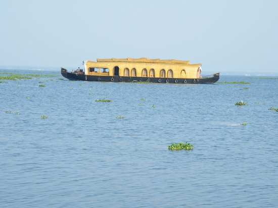 Purity at Lake Vembanad: Houseboats