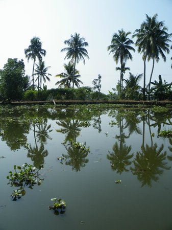 Purity at Lake Vembanad: Fantastische Backwaters van Kerala